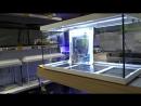 Аквариум EHEIM Aquastar LED белый 54 л
