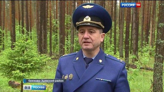 Вести-Москва • Волонтеры идут на помощь подмосковным лесникам