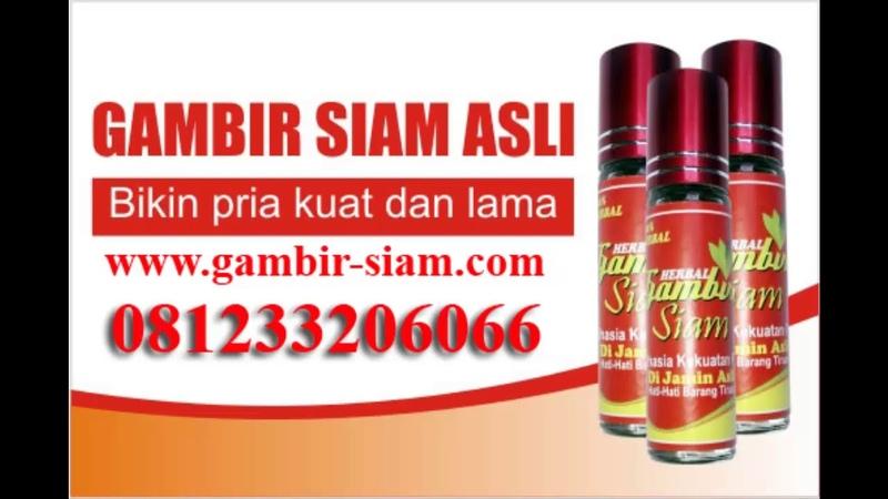Efek Samping Gambir Siam Untuk Pria Dan Wanita WA081233206066