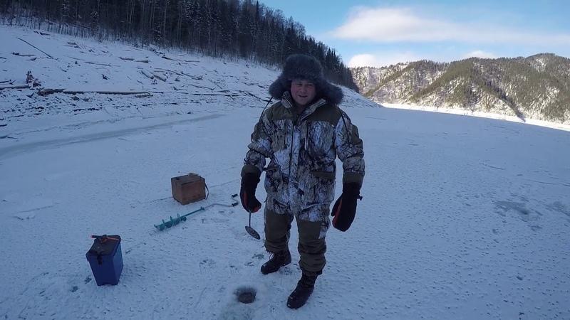 Зимняя рыбалка 2019, Саяно-Шушенское водохранилище, Джойская сосновка, окунь на балансир!