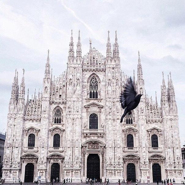 Прямые рейсы в Милан за 7800 туда-обратно из Москвы