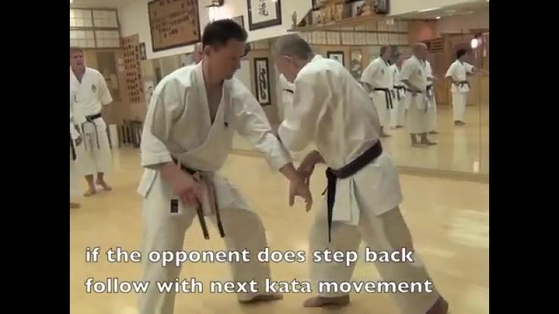 сенсей Таира Годзю-рю карате на семинаре.