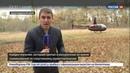 Новости на Россия 24 • Спасатели более суток искали ребенка, потерявшегося на чемпионате по ориентированию