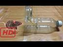 Пластиковые Мышечные Ловушки Для Бутылок В Камбодже 3 Как Поймать Крысу С Бутылочной Ловушкой В