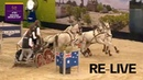RE LIVE Driving Maastricht FEI Driving World Cup™
