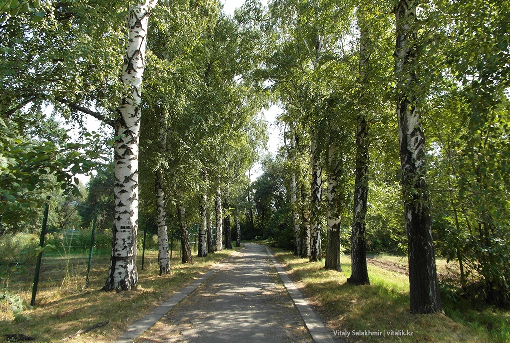 Ботанический сад Алматы, 2018