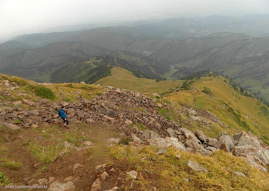 Дорога на Фурмановку летом 2018