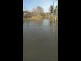 Старый базар затоплен, Рузаевка