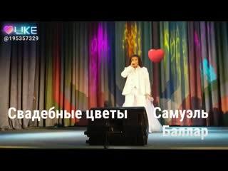 Самуэль Баллар!!!! Шикарная песня моей любимой Ирины Аллегровой!!!! Свадебные цветы!!!! Спасибо группе«Импульс»