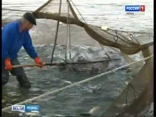 Рязанская рыба «показывает хвост» санкциям