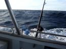 Рыбалка у берегов Австралии