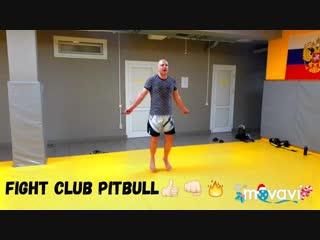 05.01.2019.Fight Club PitBull