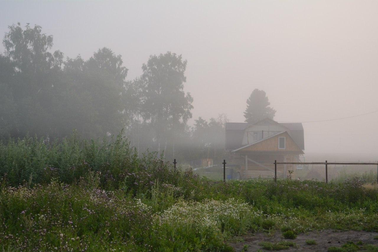 формирования красивого архивные фото деревни дизьмино если сома