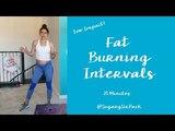 Fat Burning HIIT Cardio Workout Bodyweight Cardio Traning