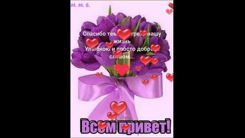 Doc169900302_498159926.mp4