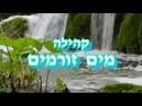 «Да не смущается сердце ваше» — Р. Кухаровский. ЕМО МАИМ ЗОРМИМ Израиль