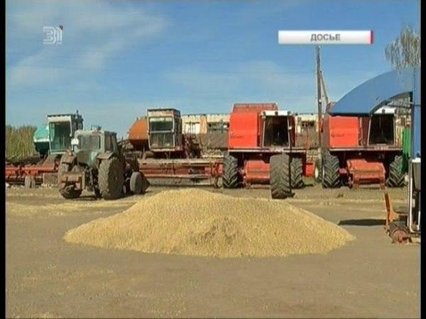 Работа в убыток. Южноуральские аграрии разоряются из-за высоких цен на бензин