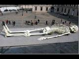Биологи вздрогнули.12 ти метровые скелеты,найденные в Индии,не принадлежат земной цивилизации