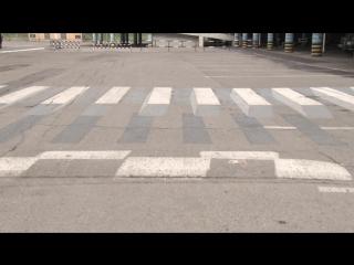 В Альметьевске появилась 3D-зебра