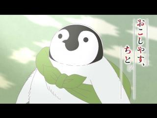 Okoshiyasu, Chitose-chan   Добро пожаловать, Титосэ-тян - тизер.