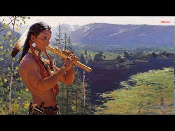 Pra Dormir e Relaxar - 2 Horas de Flauta Indígena e Sons da Natureza