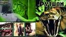 Python 2000   Richard Clabaugh   Frayne Rosanoff, Robert Englund, Casper Van Dien   Hollywood Movies