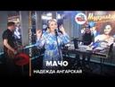 Надежда Ангарская - Мачо (LIVE Авторадио)