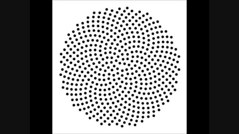 Fibonacci Sequence Binaural Beats - 1,2,3,5,8,13,21,34,55,89 Hz
