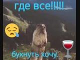 102791163_Prikol_YUmor-nashobmen.org.mp4