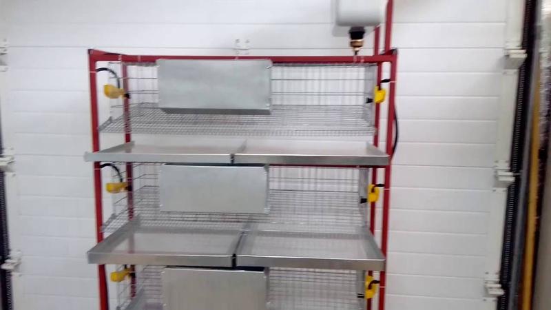 Клетка для перепелов, 4-х ярусная на 100 перепелов