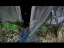 Deleted Кошкин дом заброшенный дом с котами