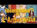 Identification de l'Antéchrist - Partie 2