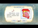 Обучение чтению Корана -Урок 4 (Буквы- Ха, Фа, Къаф, Шин, Син, Са)_HIGH.mp4