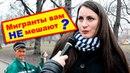 Мигранты в России нужны? Социальный опрос!