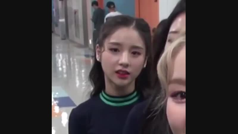 Heejin's lil sneeze and haseul's iconic 'bless you' that was a classic