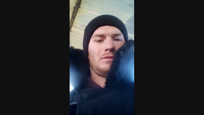 Александр Кривов - Live