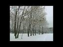 Зима. Декабрь. Снежные кружева зимы