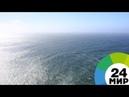 Ультрамарафон переплыть океан посильно человеку МИР 24