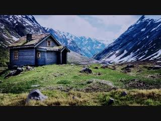 grass meadow / Blender animation