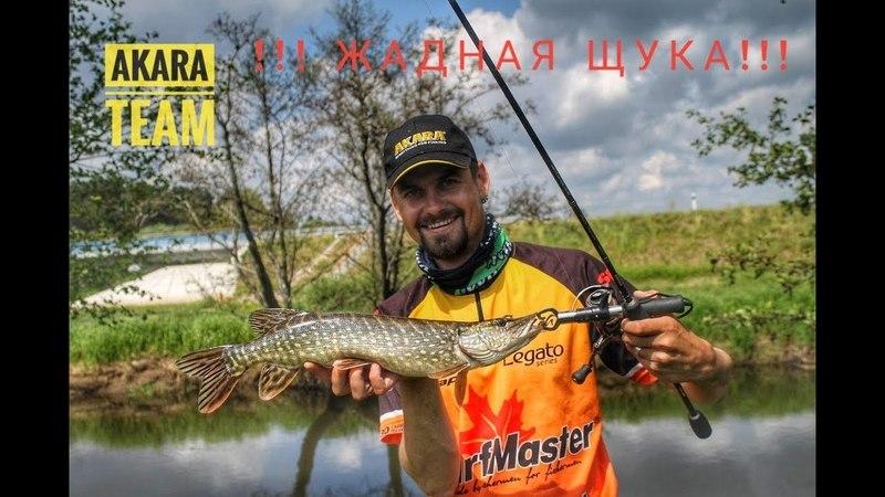Жадная щука Жизнерадостная рыбалка Джиг на реке