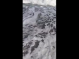 Черное море в начале июня. Самое лучшее лекарство от нервов и стресов