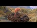 Славные пташки-мультфильм 2017