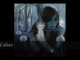 Xandria - Only for the stars in your eyes (with lyrics)