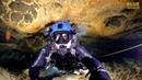 Ichetucknee Spring Cave Dive JONATHAN BIRD'S BLUE WORLD