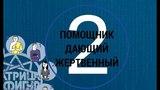 Психотип №2 Лучший помощник. Социальные профессии МАТРИЦА 9 ФИГУР