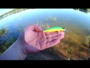 Тонущий воблер от Sealurer 11 см 11 7 гр