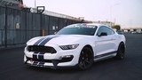 Stunning OX Ford white Shelby GT350 sporting the Gloss Black Project 6GR 7-SEVEN wheels