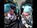 Интроверт и экстраверт ludmila_with_twins
