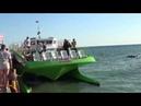 Морская прогулка на Баракуде. Архипо-осиповка.