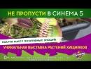 Выставка хищных растений Уфа 21-22 апреля 2018 года